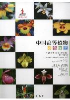 Higher Plants of China in Colour (Volume IX) Angiosperms Taccaceae-Orchidaceae