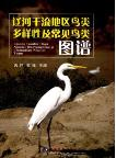 Birds Diversity and Common Birds in the Main Area of  Liao River(Liaohe Ganliu Diqu Niaolei Duoyangxing Ji Changjian Niaolei Tupu)